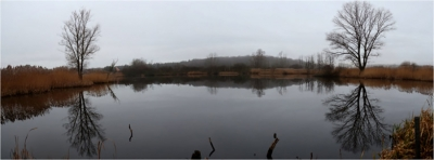 Zarrendorfer Teich